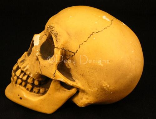 Disney Randotti Skulls